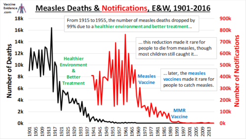 How We Conquered Measles