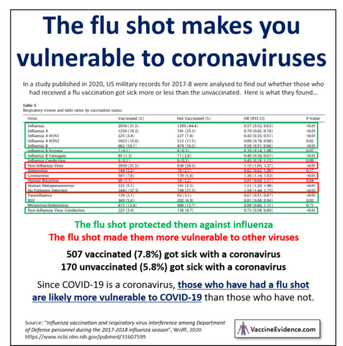 The Flu Shot and Coronaviruses
